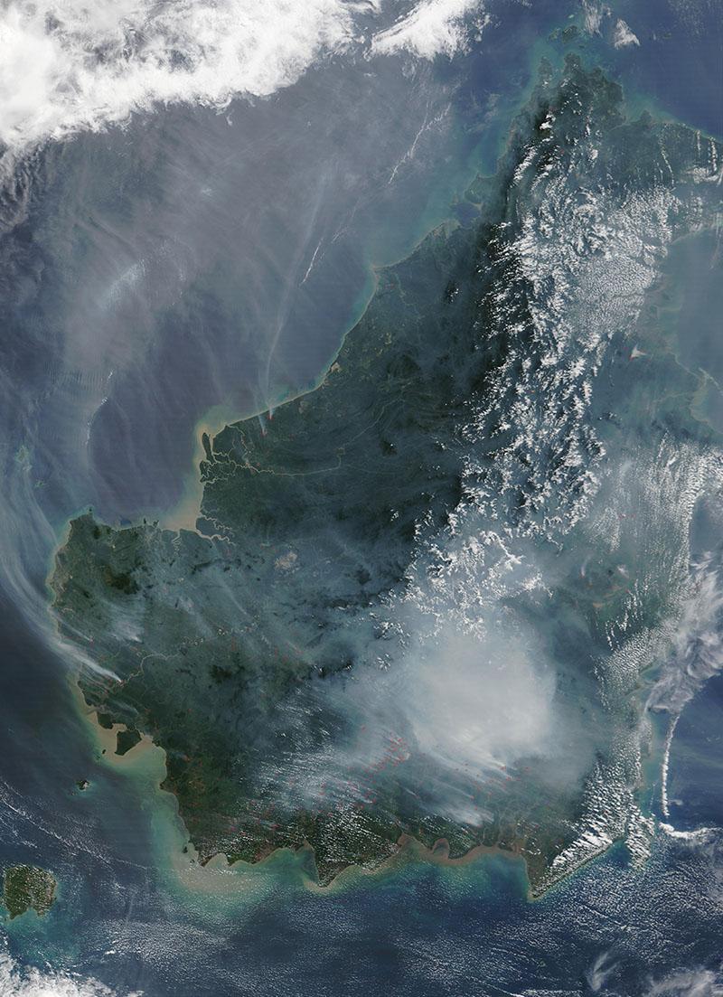 婆罗洲卫星图.jpg