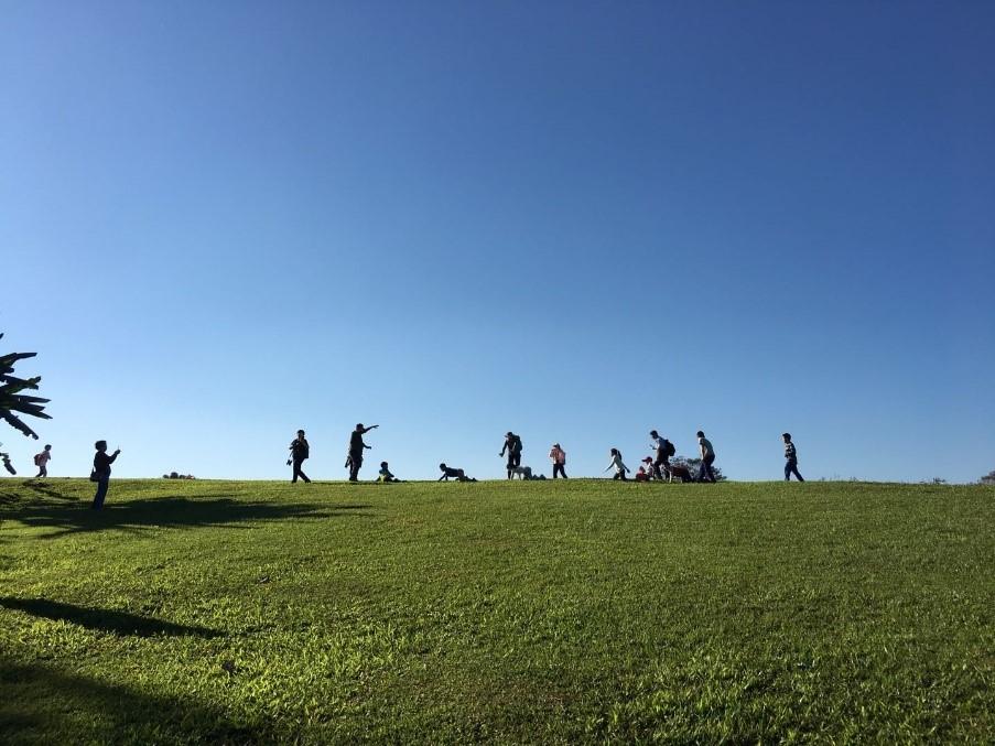 7.在草地上打滚。康耘摄.jpg
