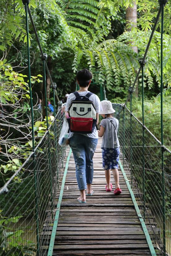 6.走入雨林,往期活动照片.png